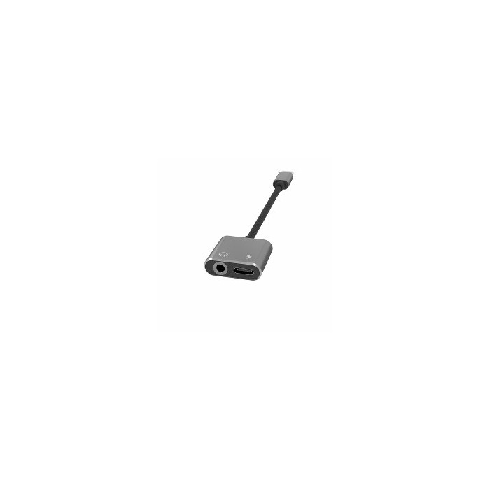 Terratec 272978 cable gender changer USB Type-C USB Type-C, 3.5 mm Black