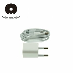 WUW T17 Universāls 2in1 Super kompakts 1A Tīkla lādētājs + Lightning uz USB uzlādes kabelis 1m Balts