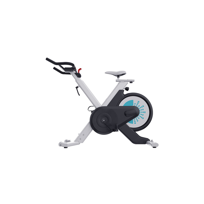 WNQ VENUS-B2 Home Use Intelligence Spin Bike, Magnetic, 100 kg, Black/White, LCD display