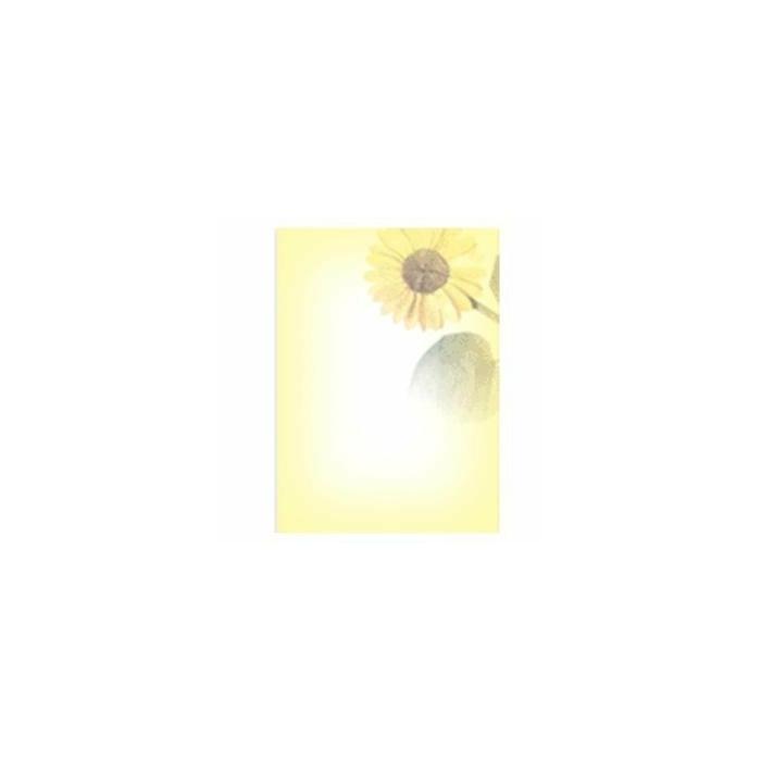 Vēstuļu papīrs Saulespuķe 5 A4/20