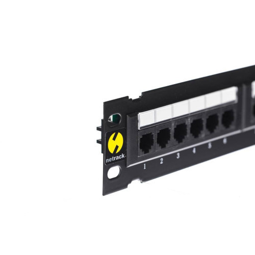 Netrack  wall-mount patchpanel 10'' 12 ports cat. 5e UTP LSA, with bracket